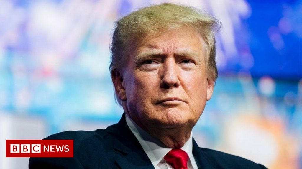 Trump sues niece and New York Times over tax story